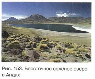Бессточное солёное озеро в Андах