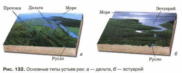 Основные типы устьев рек