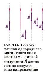 Во всех точках однородного магнитного поля вектор магнитной индукции В одинаков по модулю и по направлению